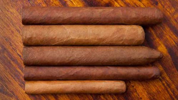 Different types of cigars